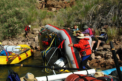 GRAND CANYON, AZ - Only one boat flipped in Lava Falls and it's a team effort to right it again. All the gear stayed strapped on.