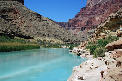 GRAND CANYON, AZ - The creamy light blue color is caused by the calcium carbonate and high copper content washing down from the watershed above.