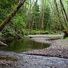Ecola Creek Meandering