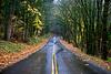 Historic Columbia River Highway
