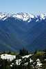 View from Hurricane Ridge - Elwha River Valley