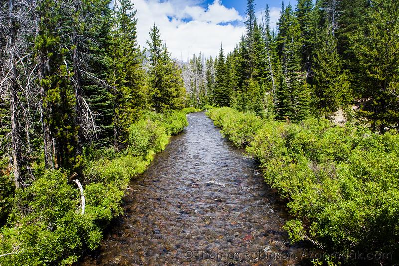 Green Trails Creek