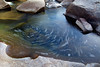 Bubbles spin in an eddy of the Merced River, creating this circular pattern.a