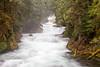 McKenzie River Winter Flow