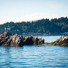 Blakely Rock, Bainbridge Island, WA