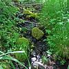 June 7, 2014. Stream at Parsnips Lakes, Cascade-Siskiyou NM, Oregon