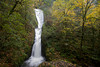 The last of the fall color hangs onto the tree next to Bridal Veil Falls in the Columbia River Gorge, Oregon.