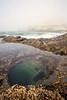 Cape Kiwanda Tidepool
