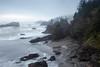 Samuel Boardman Shoreline