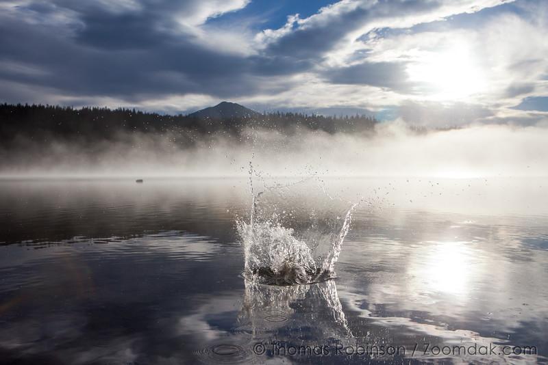 Central Oregon Splash