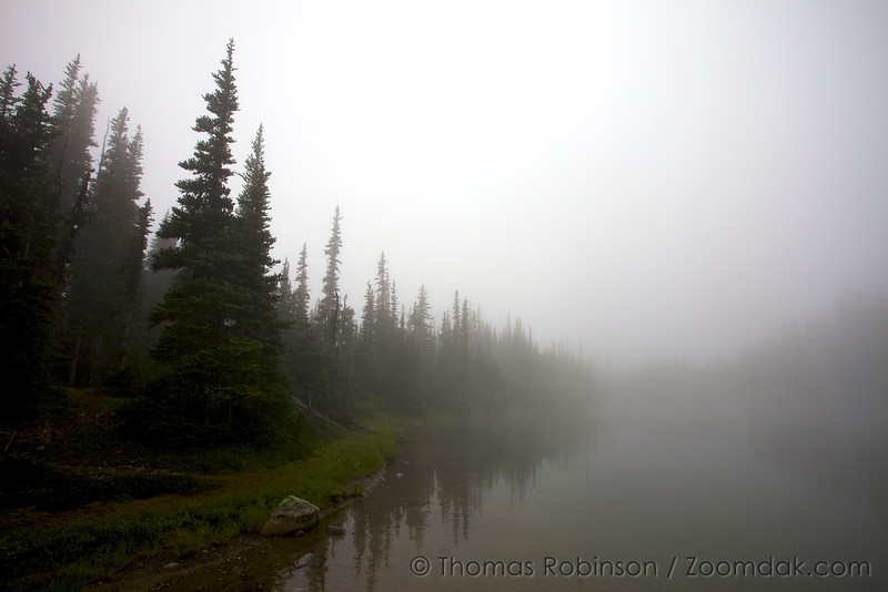 Fog settles upon Royal Lake creating an ethereal effect with the trees disappearing into the distance.