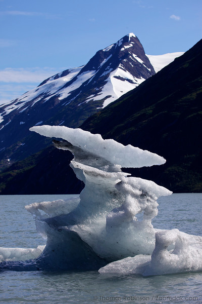 Ice Upon Portage Lake, Alaska