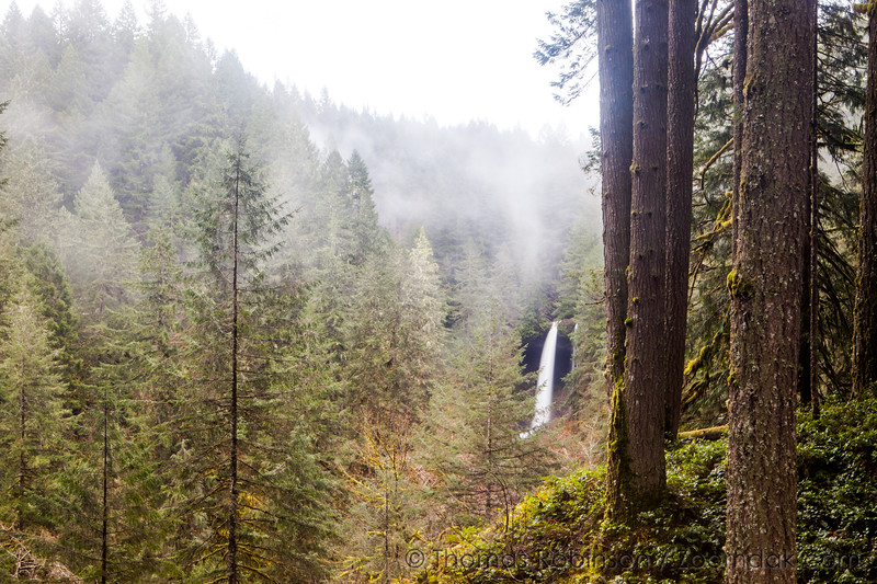 North Falls Viewpoint in Mist
