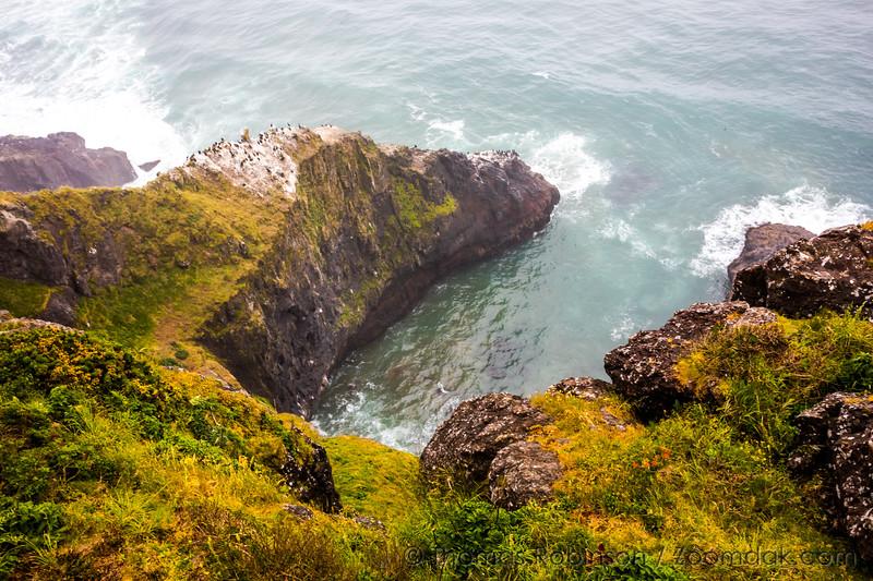 Heceta Coastal Cliffs