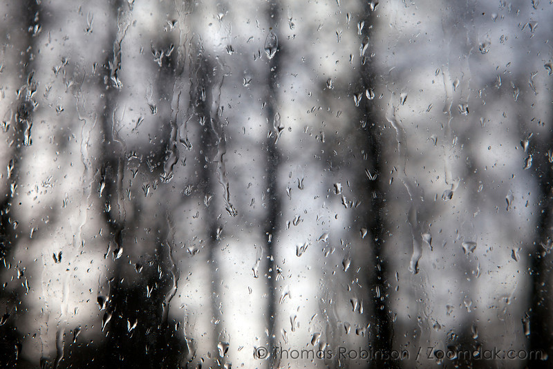 Rain splatters upon a window with a forest backdrop.