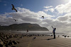 A woman feeds an flying seagull near the cove in Seaside, Oregon.