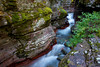 Baring Creek slowly erodes down the sedimentary rocks of Glacier National Park in this beautiful red rock gorge.