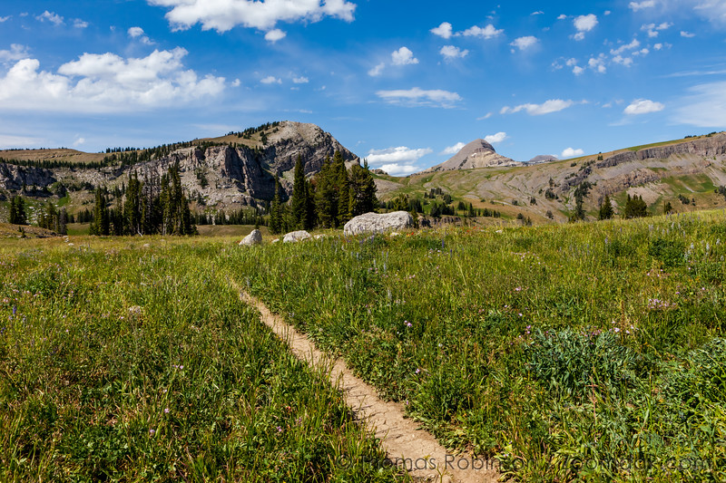 Trail to Marion Lake