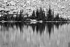 The shape of the trees on the edge of Thunder Lake look like a music  waveform signal with peaks and fade.