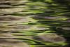 Green Water Texture