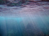 Light filters through the water along the Baja Peninsula coastline.