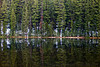 Todd Lake Reflection