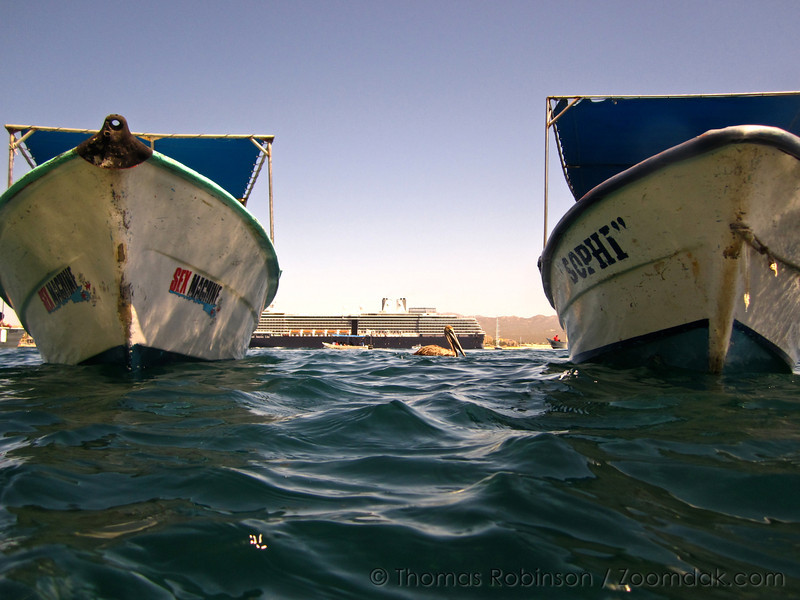 A pelican floats between two water taxi boats near Land's End in Cabo San Lucas, Mexico.