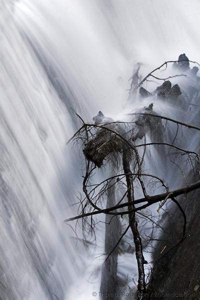A look behind Whatcom Falls.