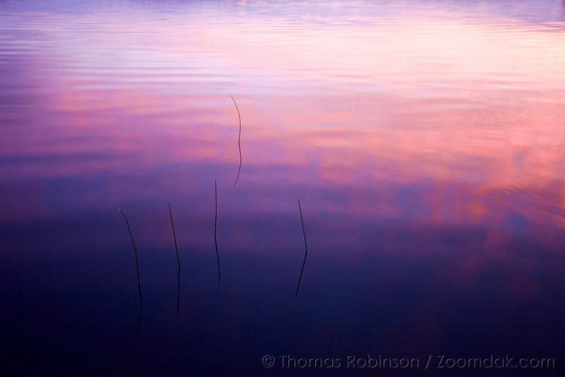 Sunset Afterglow - Ozette Lake