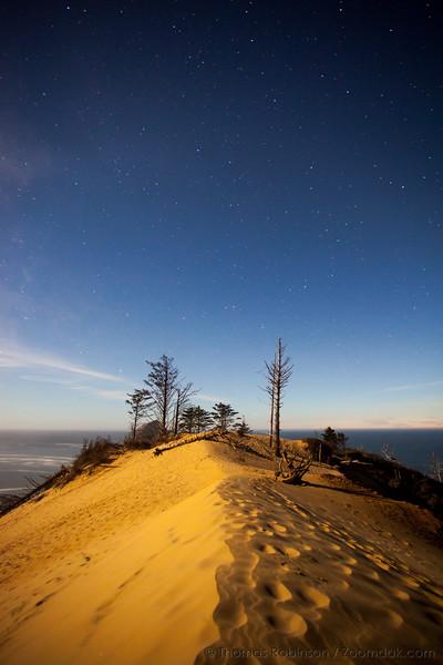 Dune Top Under the Stars