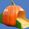 Pumpkin Double Slide, 8'H x 12'L #9225