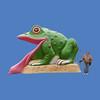 Frog Slide, Large 15'L X 10'H #9001