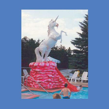 Unicorn Slide #9053
