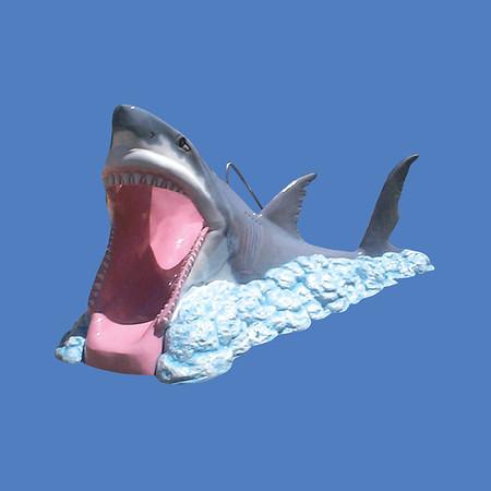 Full Body Shark Slide #9133