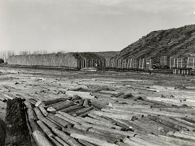 Logging-GreenBay-WI-1940