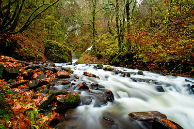 Bridal Veil Creek; November 12, 2012; Columbia River Gorge National Scenic Area, Multnomah County, Oregon