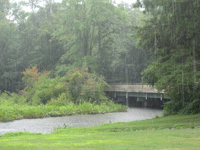 Dogue Creek deluge