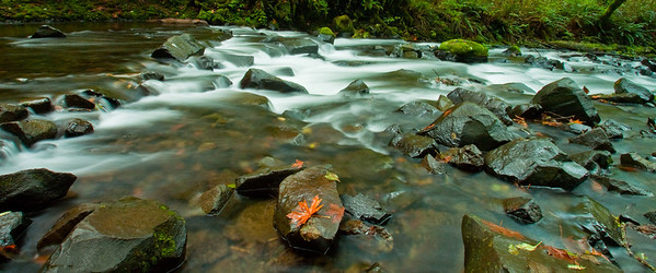 Bridal Veil Creek; October 10, 2013; Columbia River Gorge National Scenic Area, Multnomah County, Oregon