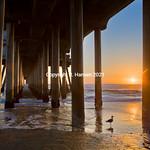 Huntington Beach Pier 6, @ R  Hansen 2015