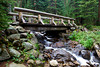 A beautiful wooden bridge on Bluebird Lake Trail in the Wild Basin of Rocky Mountain National Park. 3