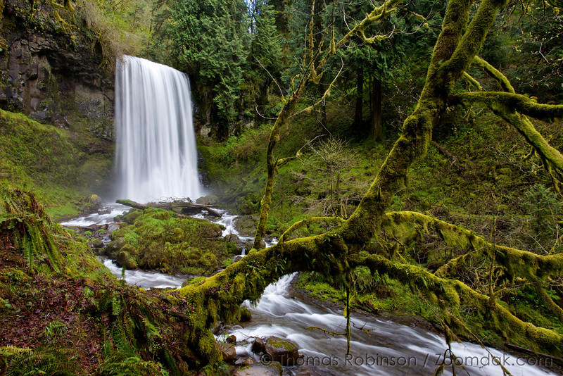 Upper Bridal Veil Falls is one of the most beautiful falls in the Columbia River Gorge. Bridal Veil Creek reaches a layer of basalt cliffs and plunges 100 feet down.