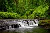 Silver Creek, Silver Falls State Park