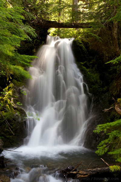 Lower Madeline Falls, Olympic National Park