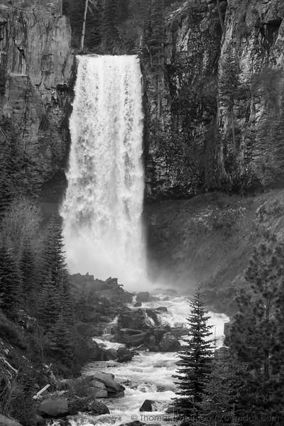 Tumalo Falls in Black and White