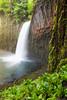 Abiqua Falls Unique View