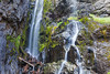 Henline Falls, Oregon - Horizontal