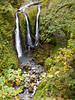 This waterfall flows down Oneonta Creek splits into three channels and pluges 64 feet below, aptly named Triple Falls.