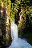 Sunlit Toketee Falls