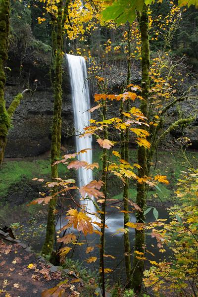 South Falls in October