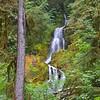 Waterfall in Hoh Rain Forest, Washington